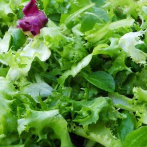 Salade Bio au poids